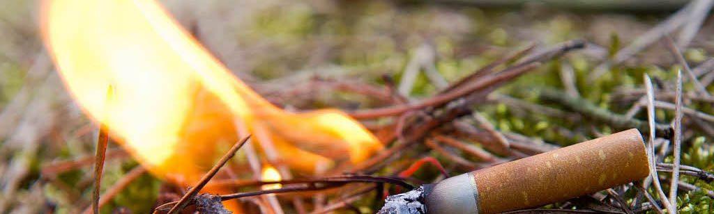 Ролик о том, что непотушенный окурок может стать причиной природного пожара